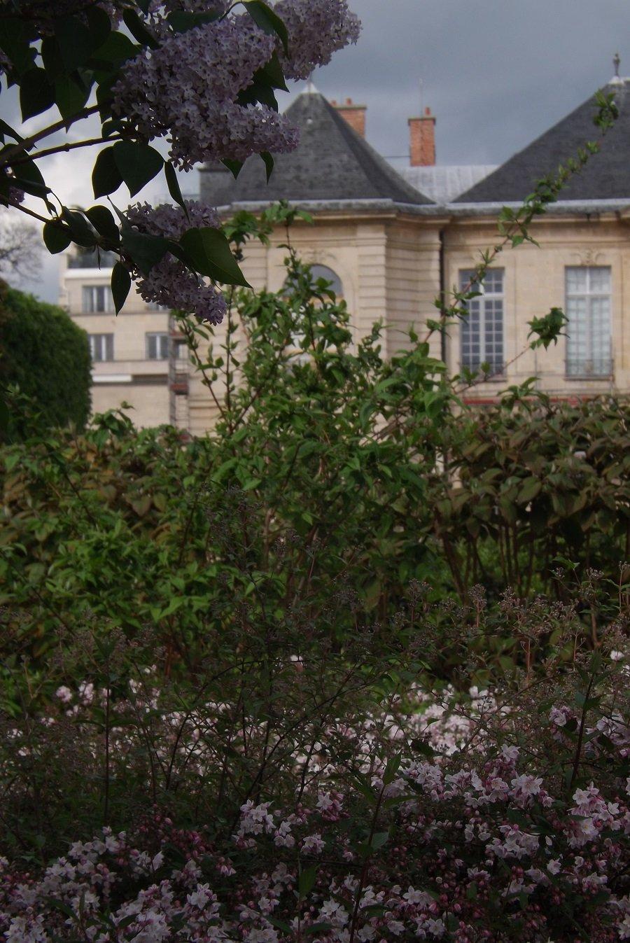 lilas et parterre fleuri pourtour basin ugolin